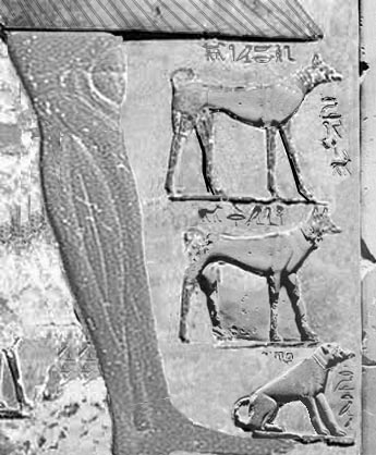 Stele of king Antef II and his favorite dogs